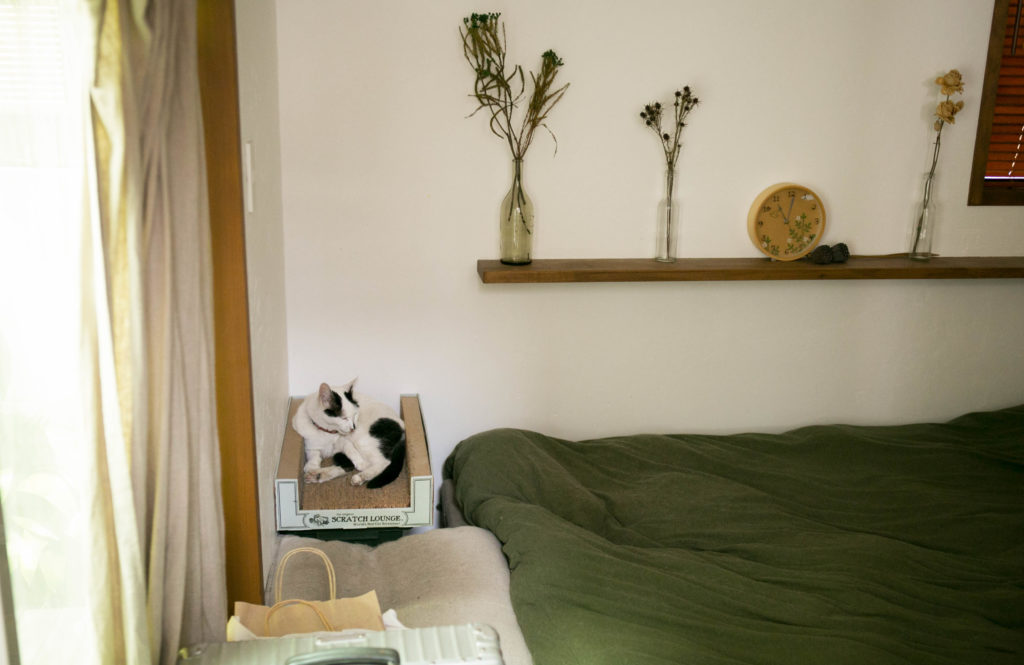"""開放的な間取りで愛猫にも心地よい武蔵野の家②  """"ペットと暮らす""""リノベーション"""