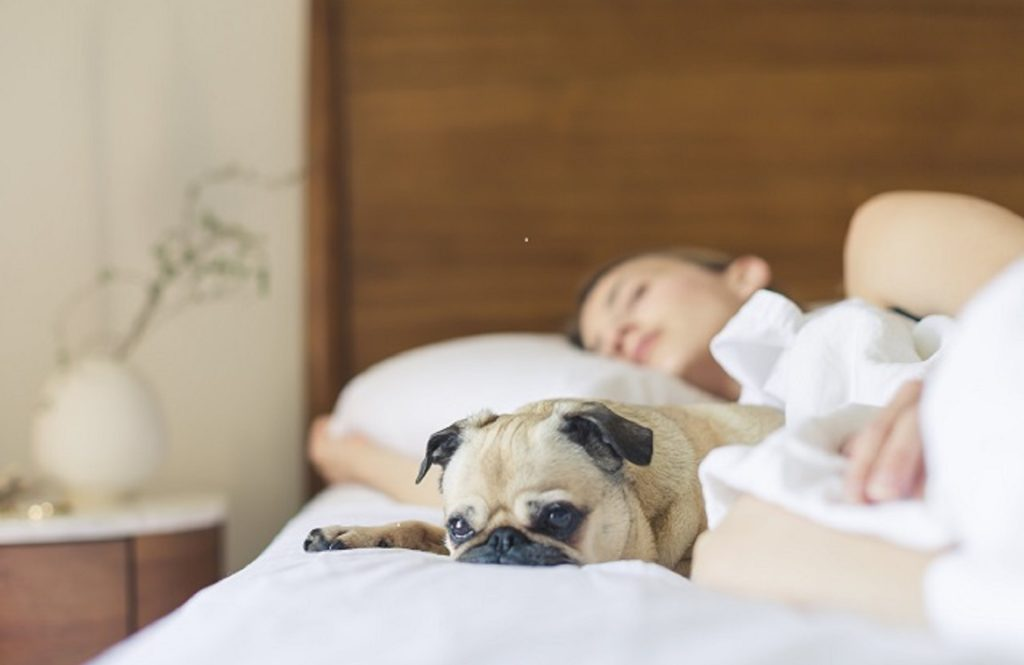 よく眠れず、疲れがとれない! それって「睡眠負債」かも⁉