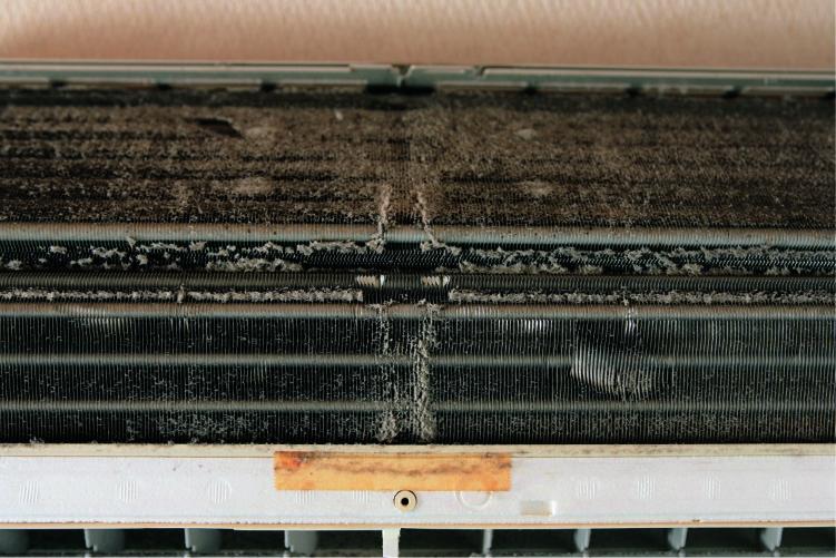 猛暑の後はエアコンに要注意。秋カビ・アスペルギルスが大量発生⁉