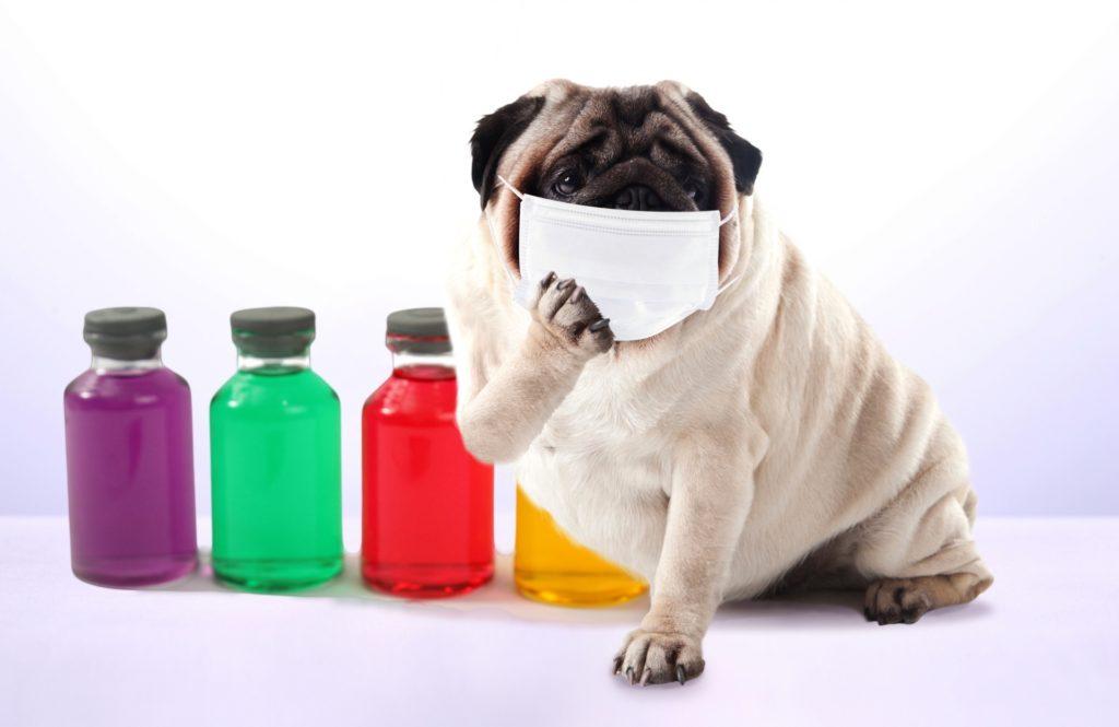 家に菌を持ち込まない!【最新除菌グッズ】で風邪&インフル予防