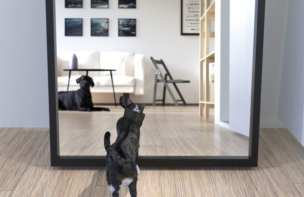 【住み家と風水:第12回】玄関の鏡が、良い気を取り込み悪い気をはね返す