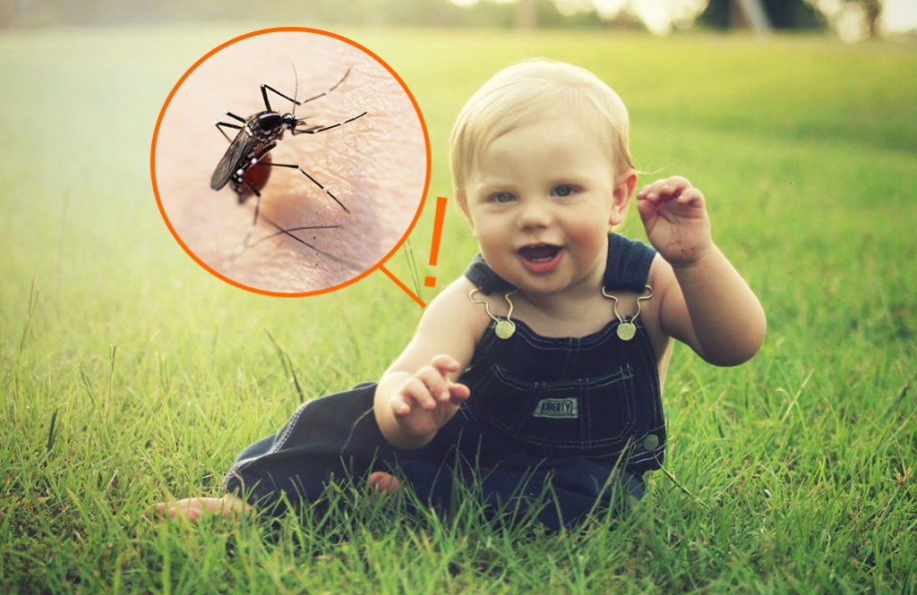 夏の必需品! 子供にも安心な【体に優しい虫よけスプレー】おすすめ5選