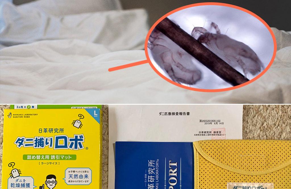 自宅のベッドで「ダニ捕りロボ」が捕まえたダニの数が凄かった!