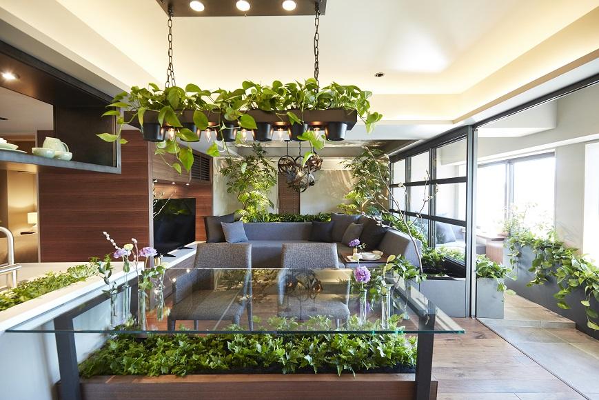 こんなに進化!マンションで「植物と暮らす」リノベーション最新事例