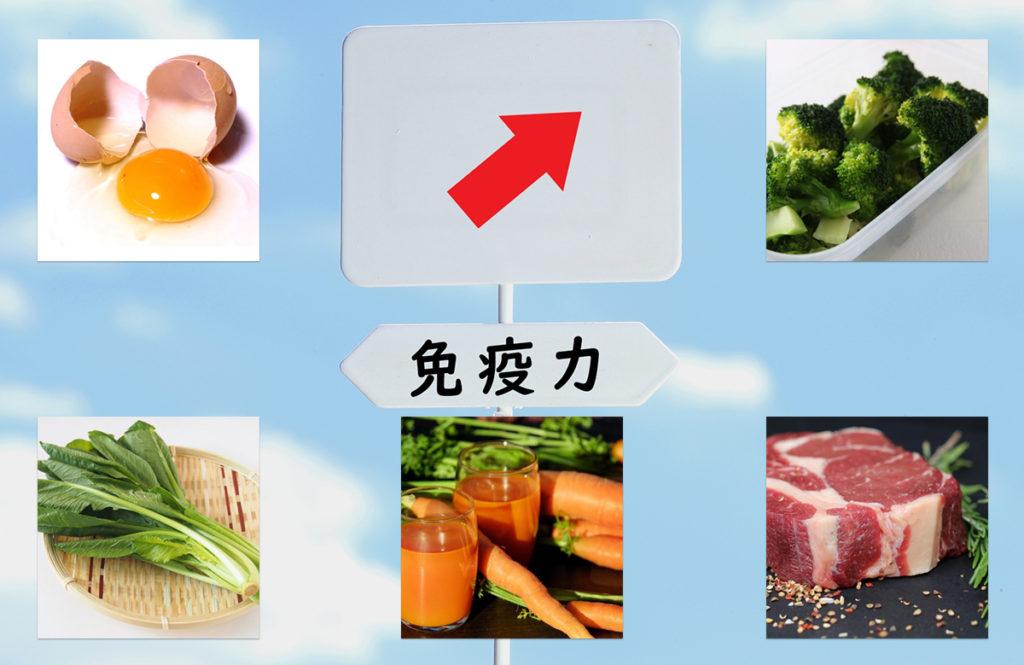 普段から食べておきたい「免疫力を上げる食材」管理栄養士のおすすめ10選