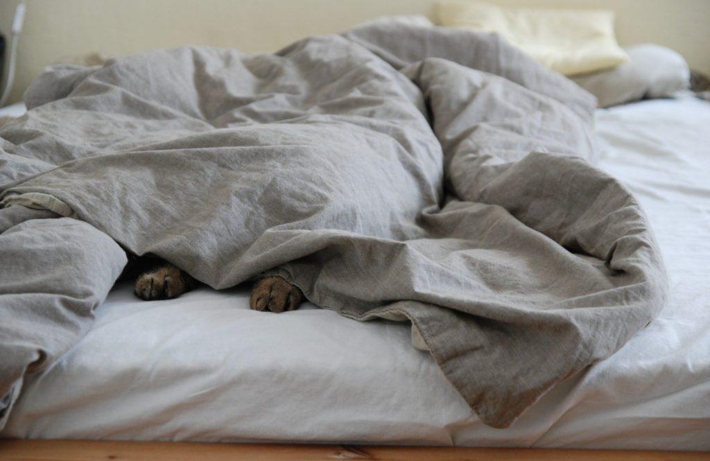 美人医師が実践している「 寝苦しい夜もぐっすり眠れる」5つの方法