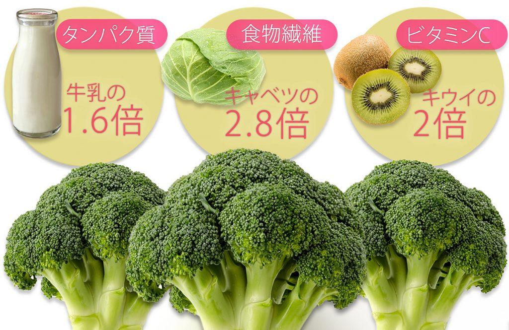野菜のなかでもずば抜けて優秀!「ブロッコリー」の栄養とおすすめレシピ